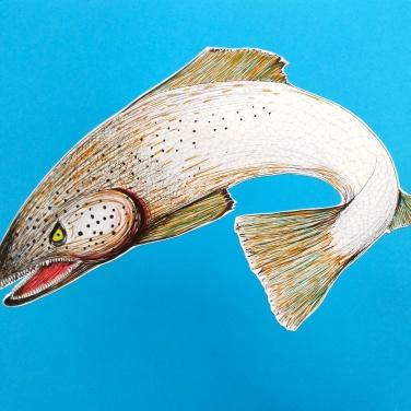 Pesce vorace